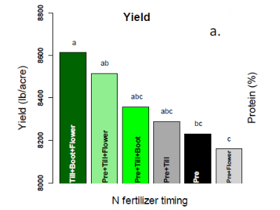 Mark Lundy : Calibrating In-field Diagnostic Tools to Improve Nitrogen Management for High Yield and High Protein Wheat in the Sacramento Valley
